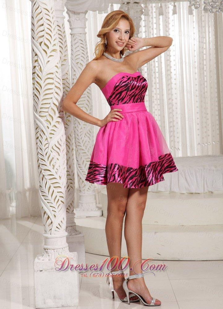 Zebra And Pink Prom Dresses 90